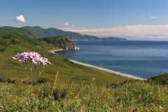 Costa del Pacífico imagen de archivo