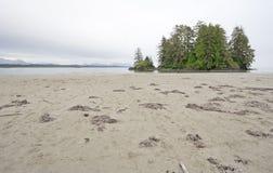 Costa del Pacifico con l'isola di spirito Fotografia Stock Libera da Diritti