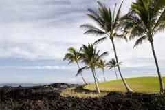 Costa del Pacifico dell'Hawai Kona Fotografia Stock