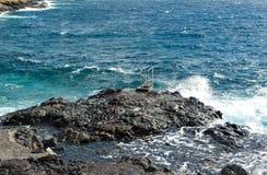 Costa del Silencio, Ténérife, Espagne Photographie stock libre de droits