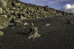 Costa dell'Islanda del sud Fotografia Stock