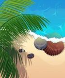 Costa dell'oceano con i rami della palma Immagine Stock