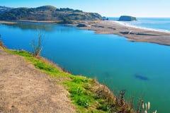 Costa dell'oceano Pacifico, California, U.S.A. Fotografie Stock Libere da Diritti