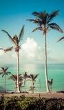 Costa delle isole Bermuda Fotografia Stock
