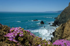 Costa di California del Nord Immagine Stock