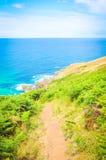 Costa di Cornovaglia a St Ives, Inghilterra fotografia stock