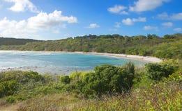 Costa di Half Moon Bay l'Oceano Atlantico - isola tropicale caraibica - l'Antigua e Barbuda immagine stock