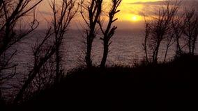 Costa di mare e bello tramonto del mare archivi video