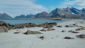 Costa di mare e spiaggia di estate, arcipelago di Lofoten norway Attrazione turistica archivi video
