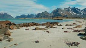 Costa di mare e spiaggia di estate, arcipelago di Lofoten norway Attrazione turistica video d archivio