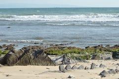 Costa di mare a Tarifa. Immagini Stock Libere da Diritti