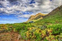 Costa di nord-ovest di Tenerife vicino al faro di Punto Teno, isole delle isole Canarie immagini stock libere da diritti