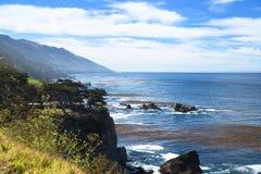 Costa di Pfeiffer Big Sur, scogliera del mare Fotografie Stock Libere da Diritti