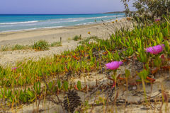 Costa di Puglia: Spiaggia di Alimini, ITALIA Lecce Immagine Stock