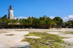 Costa di Zanzibar Fotografia Stock Libera da Diritti