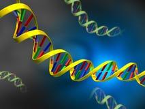 Costa do ADN ilustração stock