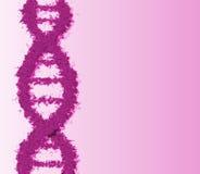 Costa do ADN ilustração royalty free
