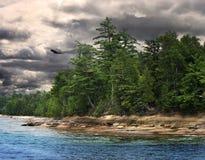 Costa do lago fotos de stock royalty free