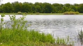 A costa do lago vídeos de arquivo