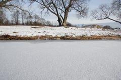 A costa do lago congelado Fotos de Stock Royalty Free