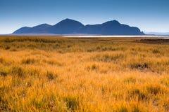 Costa do lago de Zhari Namco Imagem de Stock