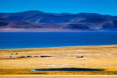 Costa do lago do namco de Zhari Fotografia de Stock Royalty Free
