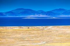 Costa do lago do namco de Zhari Fotografia de Stock