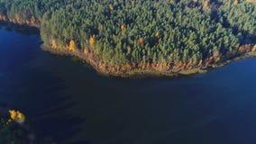 Costa do lago Dolysets, vídeo da antena do dia de outubro Região de Pskov, Rússia filme