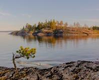A costa do Lago Ladoga Fotos de Stock Royalty Free