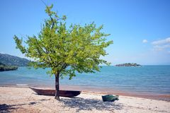 Costa do lago skadar, barco, árvore, fundo bonito, Montenegro Imagem de Stock