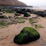 Costa do leste Inglaterra de Filey Yorkshire Imagens de Stock Royalty Free