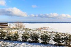 A costa do mar Báltico Imagens de Stock