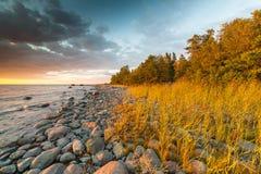 Costa do mar Báltico foto de stock