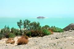 Costa do Mar Morto. Israel foto de stock royalty free