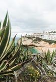 Costa do oceano de Portugal Portimao imagem de stock