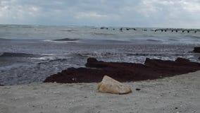 Costa do outono do mar Cáspio vídeos de arquivo