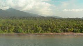 Costa do Pacífico com floresta úmida video estoque