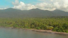 Costa do Pacífico com floresta úmida filme