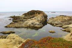 Costa do Pacífico dos fluxos das rochas imagem de stock royalty free