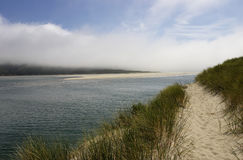 Costa do Pacífico - praias de Sandy Fotografia de Stock Royalty Free