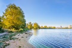 Costa e árvores do rio Imagens de Stock Royalty Free
