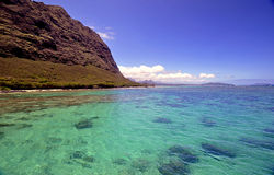Costa e oceano havaianos Fotografia de Stock
