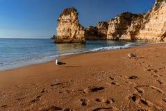 Costa costa en Algarve Fotografía de archivo libre de regalías