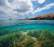 Costa costa en Cabo de Palos en España y pescados con el submarino del seagrass imagen de archivo libre de regalías