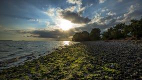 Costa en el parque nacional de los marismas Foto de archivo libre de regalías