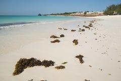 Playa en Zanzíbar Foto de archivo libre de regalías