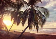 Costa en Costa Rica fotografía de archivo