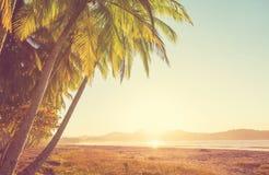 Costa en Costa Rica imagenes de archivo
