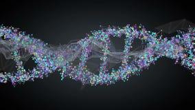 Costa espiral do ADN ilustração stock