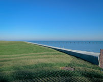 Costa gramínea do lago Fotografia de Stock Royalty Free